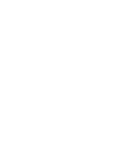 Foam microphone windshields & Microphone flags